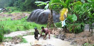 Two gem miners working knee deep in water with a sieve – are paid no wages and get only meals