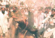 Demonstrators in Karachi burn an effigy of George 'dog' Bush  after US forces bombed Afghanistan in September 2001