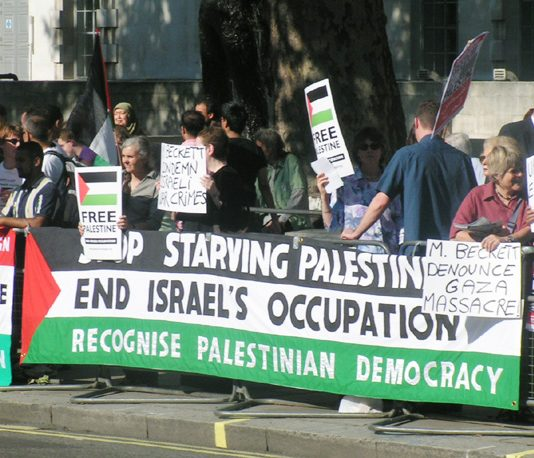 A section of the 400-strong picket of Downing Street against the Blair government's refusal to condemn Israel for its attack on the Palestinian people