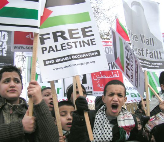 Supporters of a Palestinian state picketing Downing Street on January 26th 2008