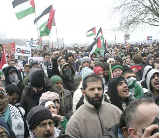 Some of the 200,000 who marched on the Israeli Embassy last Saturday at the rally in Hyde Park before the march
