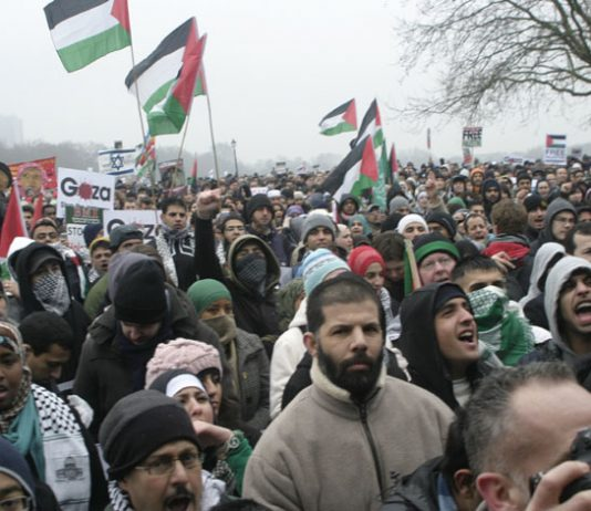 A section of the huge 100,000-strong crowd at the rally in Hyde Park on January 10th before marching on the Israeli Embassy