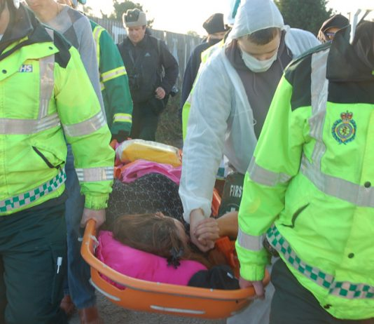 Nora Egan being stretchered away and taken to Basildon General Hospital after being injured in the police-led raid on her home early yesterday morning