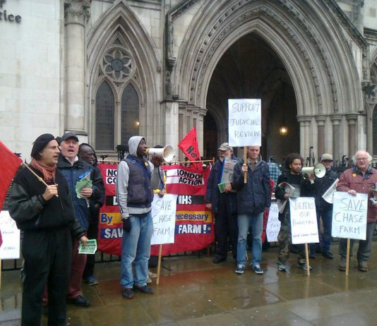 The picket outside the High Court yesterday morning demanding that a full A&E 24/7 must stay at Chase Farm Hospital in Enfield