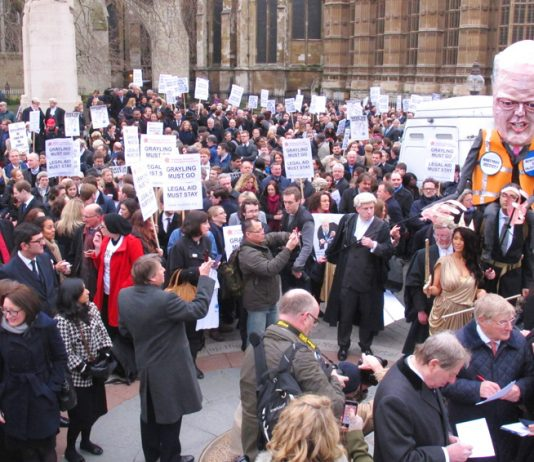 A section of the 3,000-strong rally of barristers, solicitors, probation staff and their supporters opposite parliament yesterday morning
