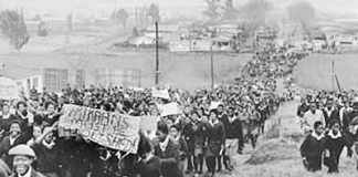In June 1976 thousands of school youth rose up in Soweto against the Apartheid regime